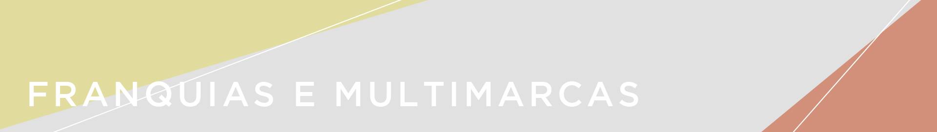 Banner topo Franquias e Multimarcas