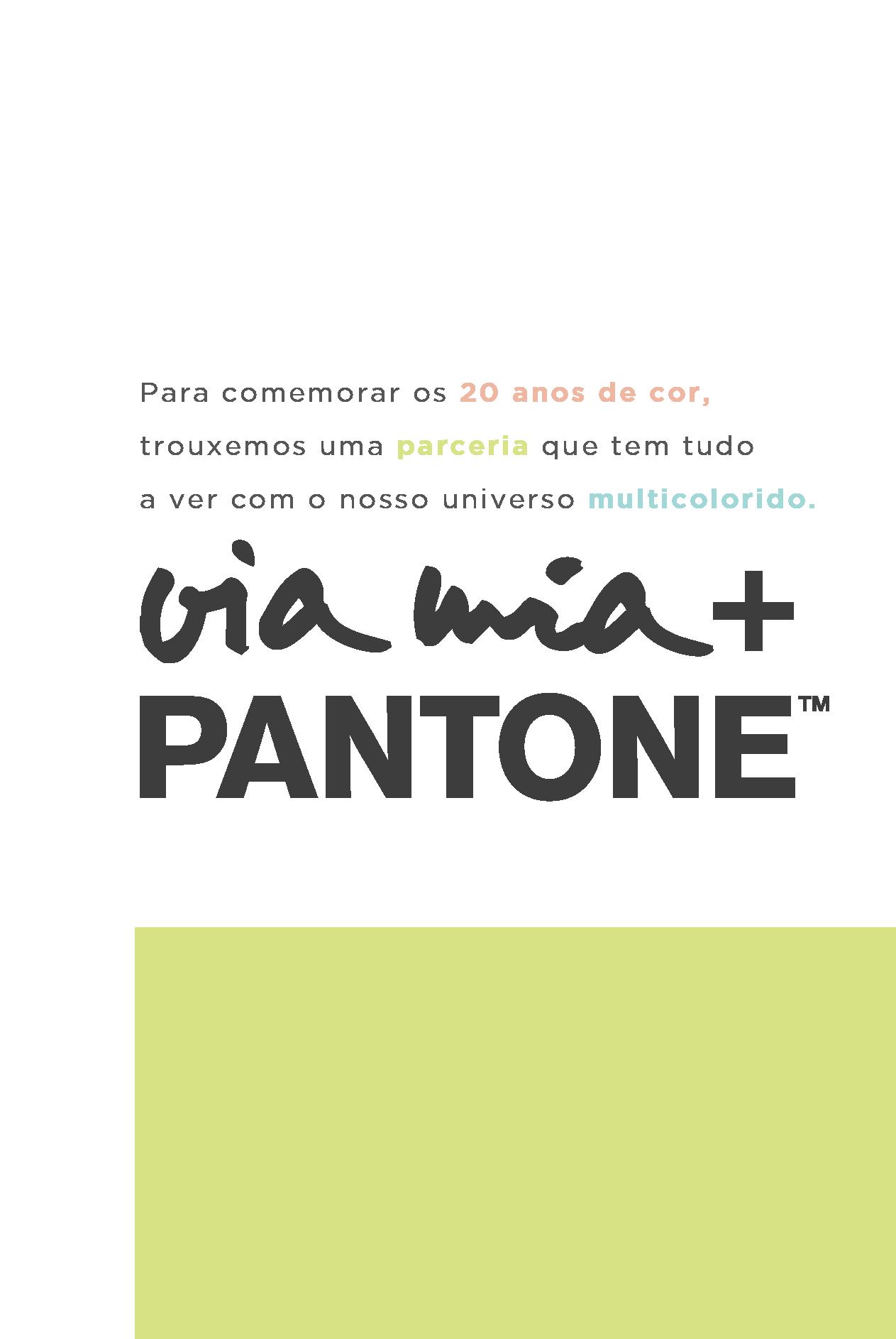 banner 2.1 pantone