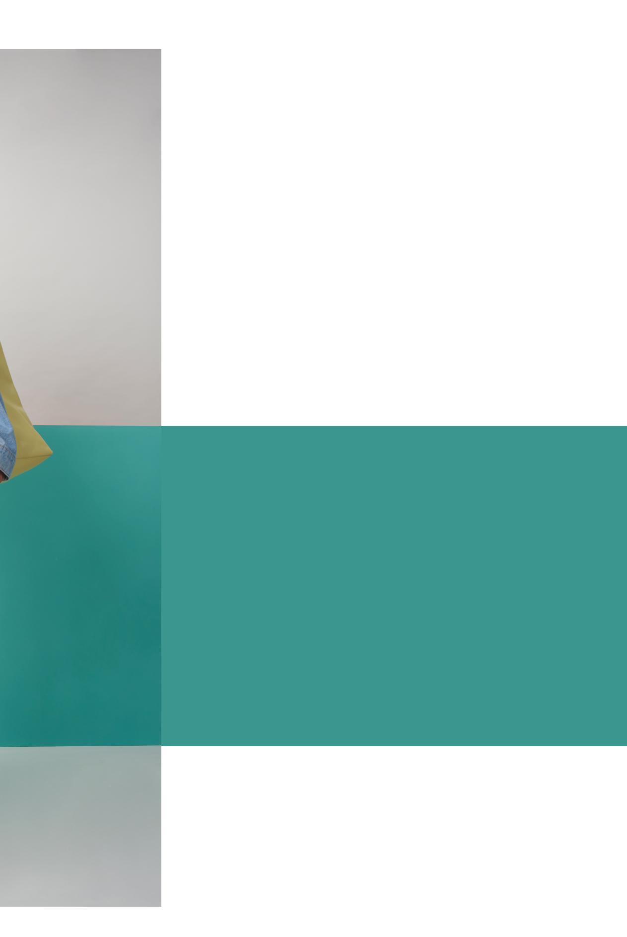 banner 2.3 pantone